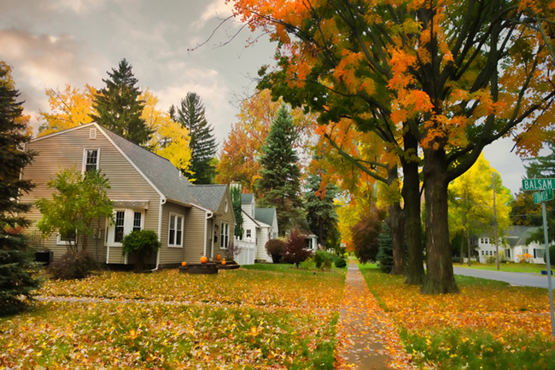 A row of homes with autumn trees out front | Fall HVAC Maintenance | Schedule a Check-Up | New Haven, IN